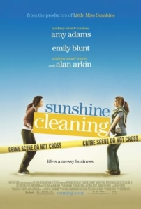 sunshinecleaningposter
