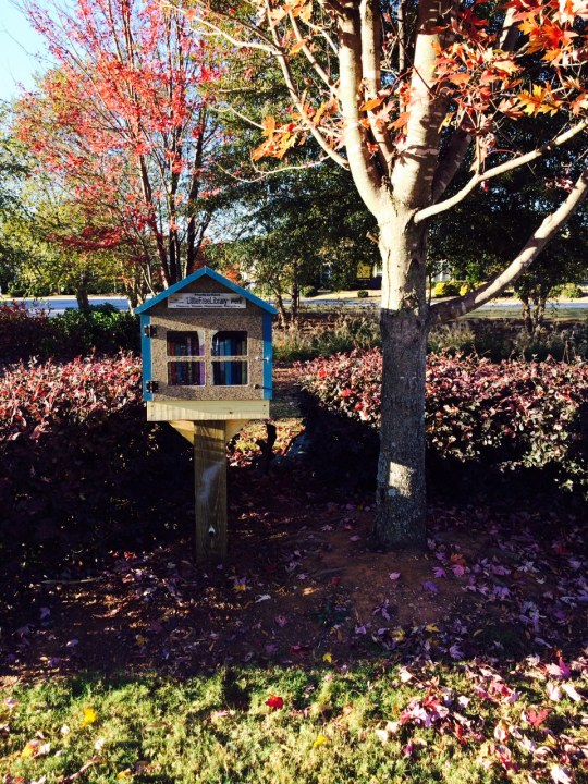 Little Free Library (2)
